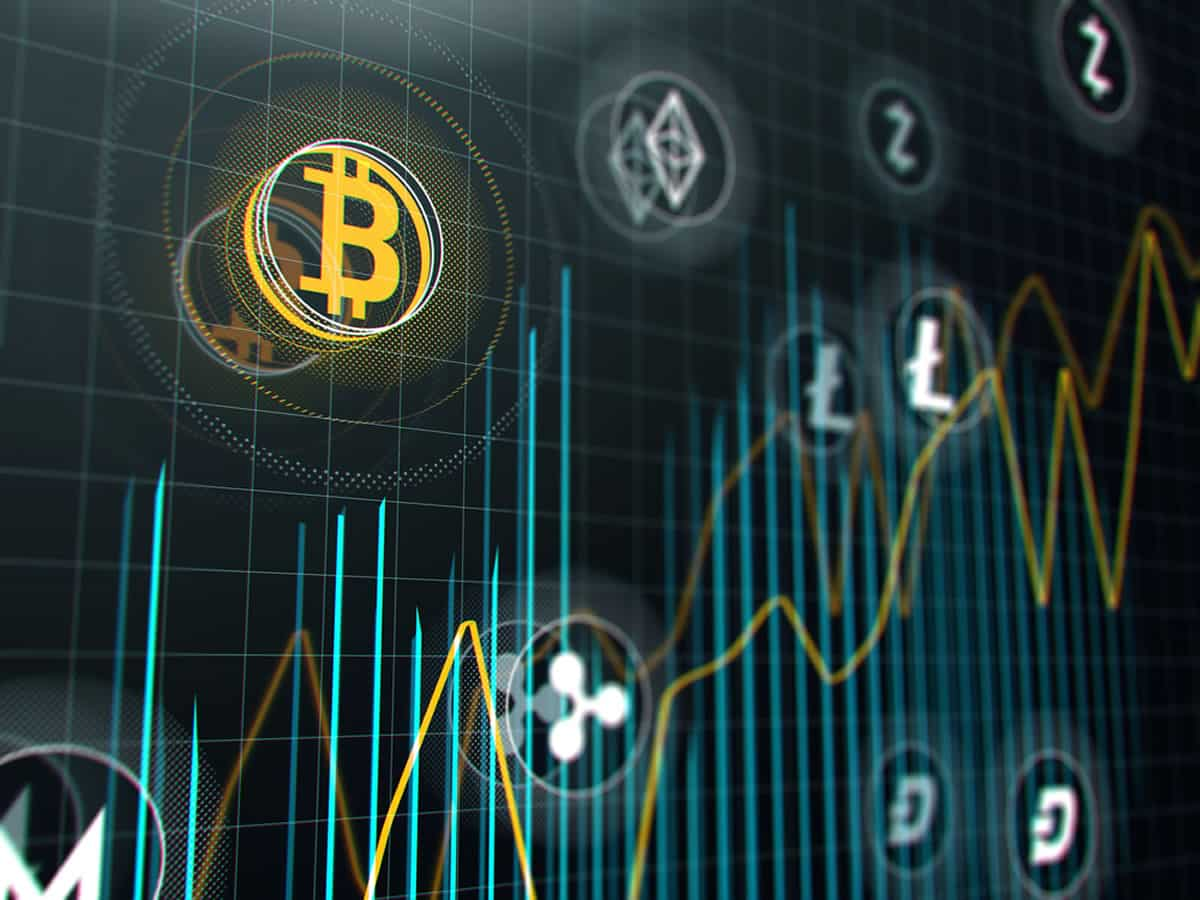 Arbitrariness of the crypto markets: what have the investors learnt?