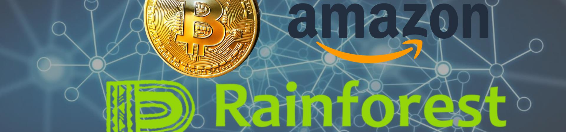 Amazon Rainforest Foundation